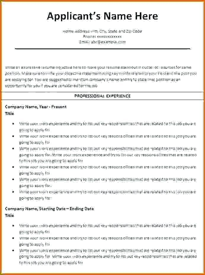Cv Template Ms Word 2010