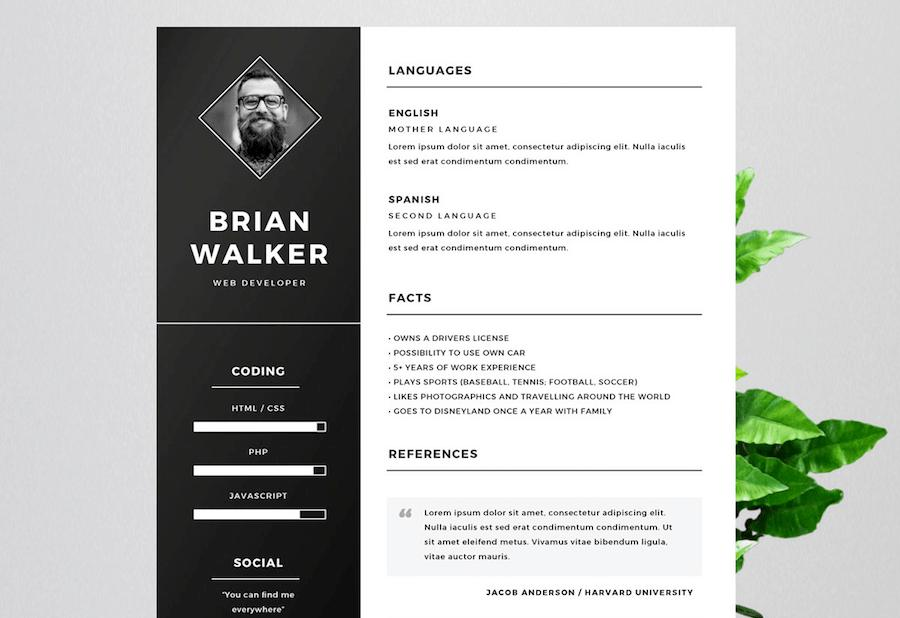 Cv Templates For Word