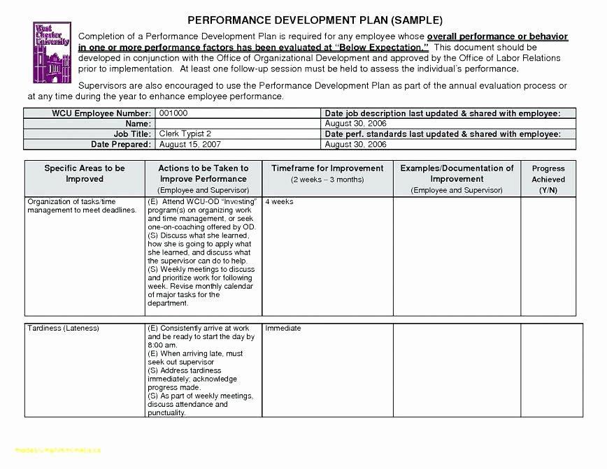 Disciplinary Form Example