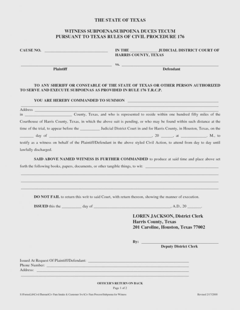 Divorce Decree Form 13