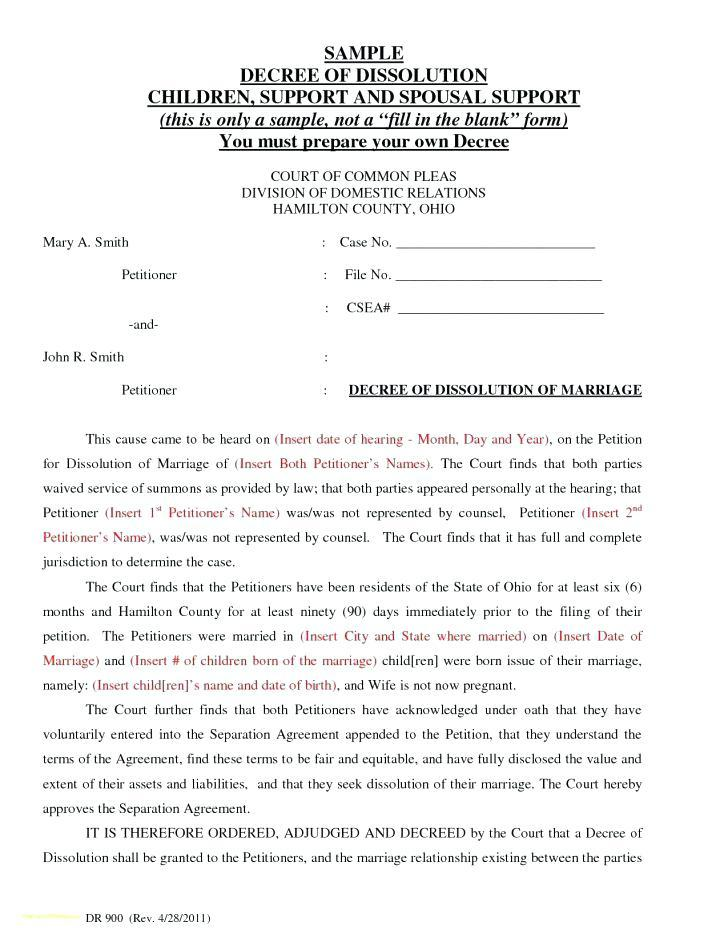 Divorce Decree Template Ohio