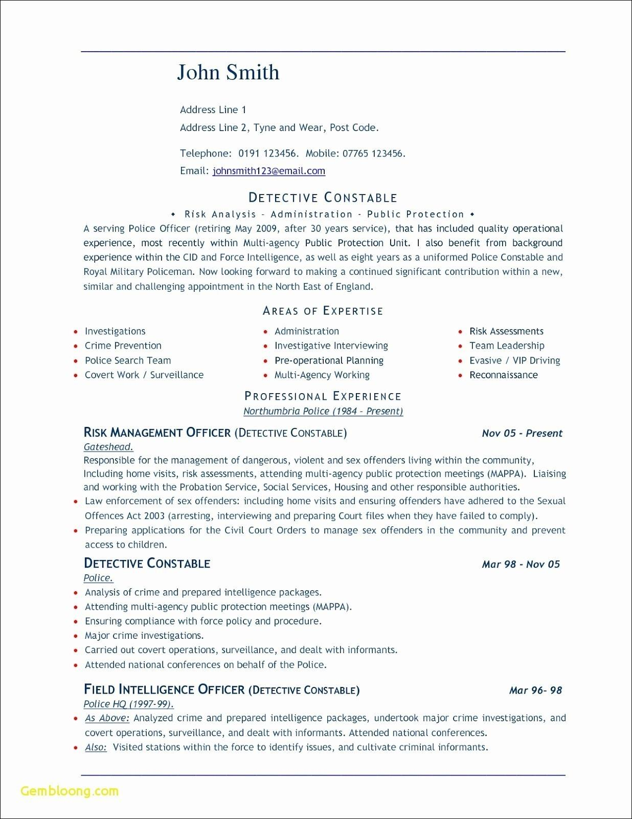 Download Elegant Resume Template Microsoft Word