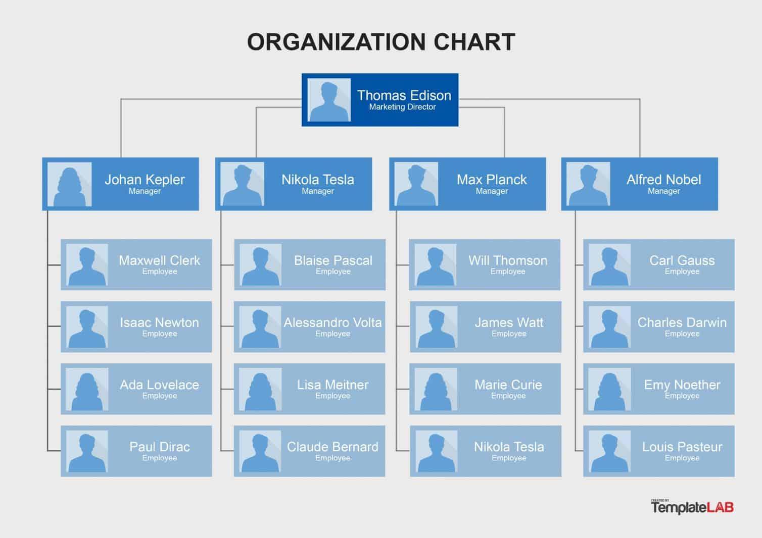 Download Organizational Chart Template Word
