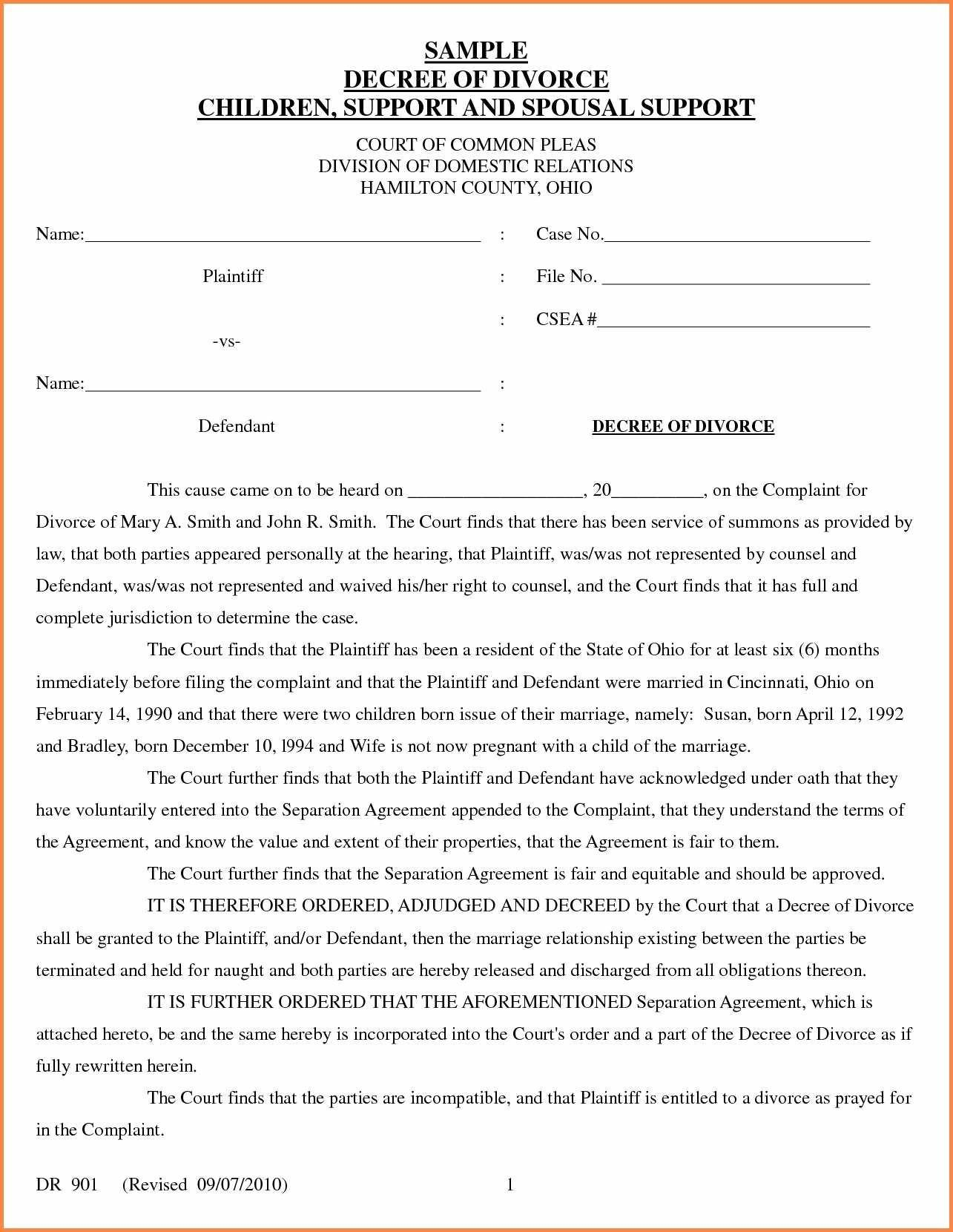 Example Divorce Papers
