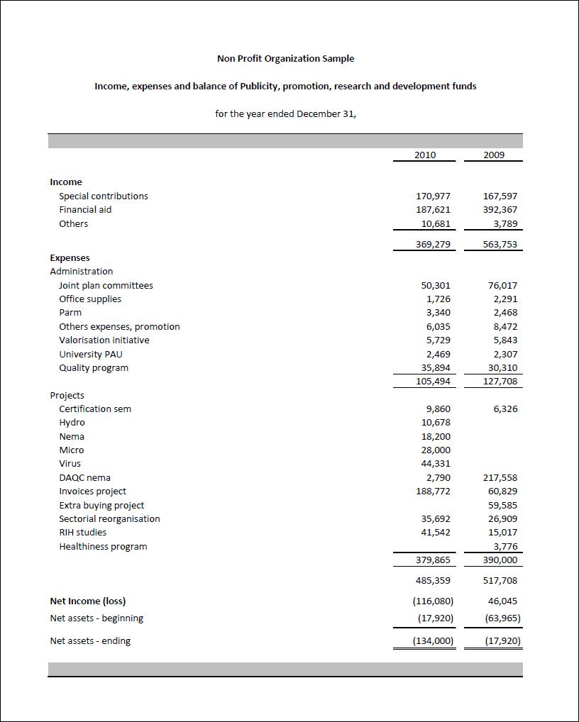 Example Non Profit Balance Sheet And Income Statement