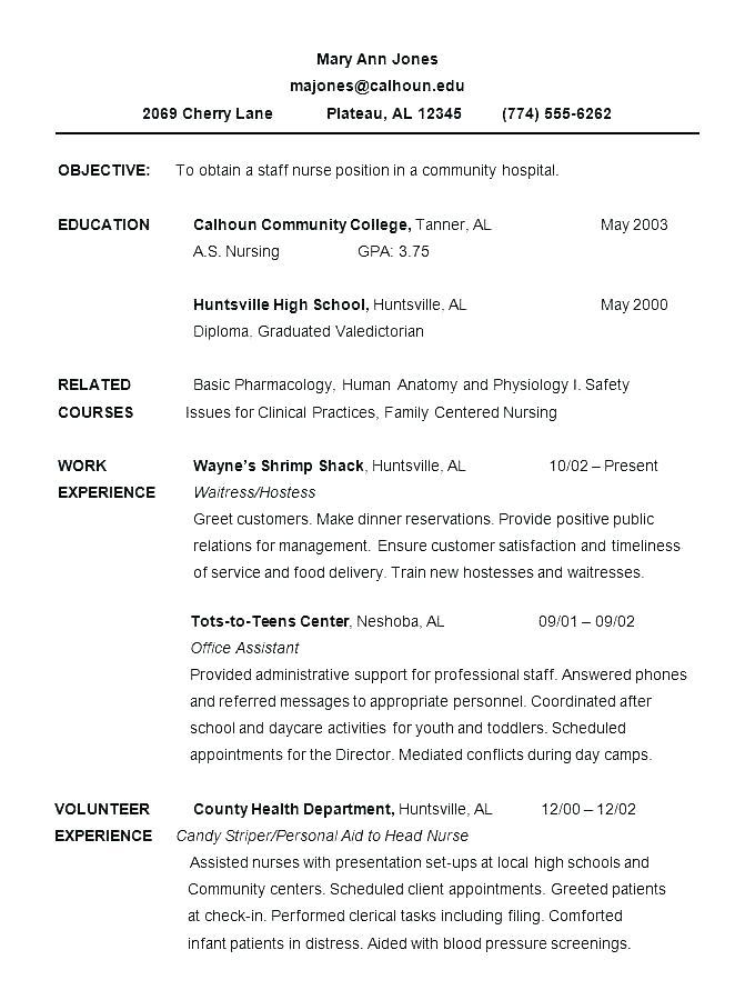 Example Of Chronological Resume Template