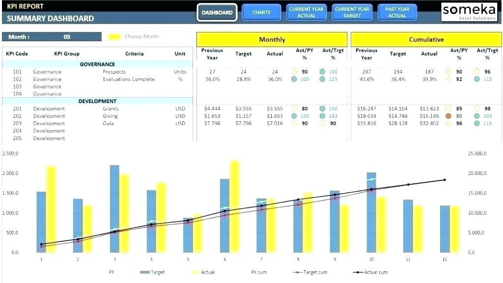 Executive Project Dashboard Examples
