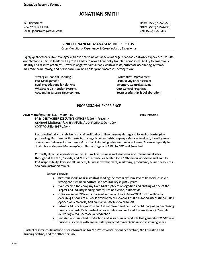Executive Sales Professional Resume Template