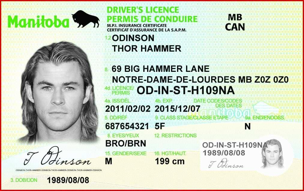 Fake Drivers License Template Philippines