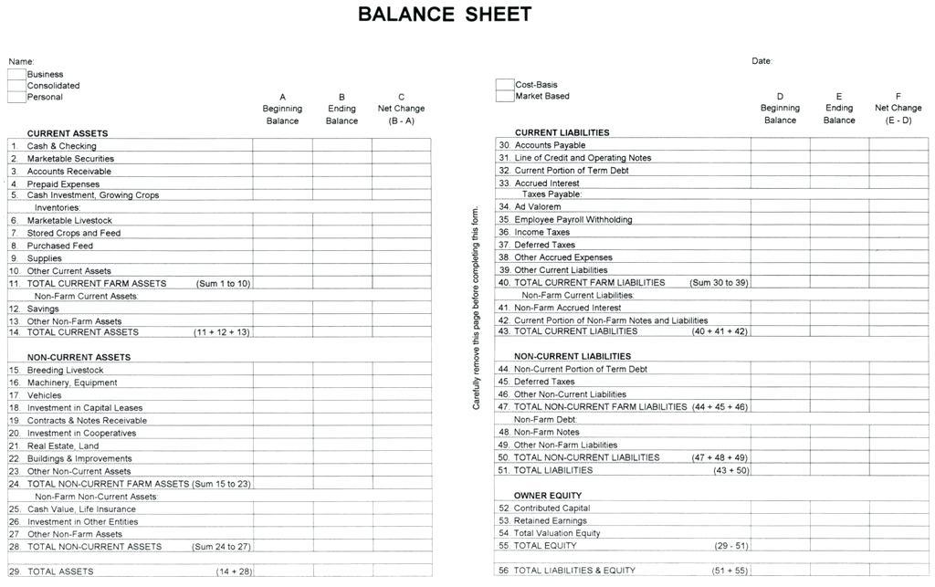 Farm Credit Balance Sheet Form