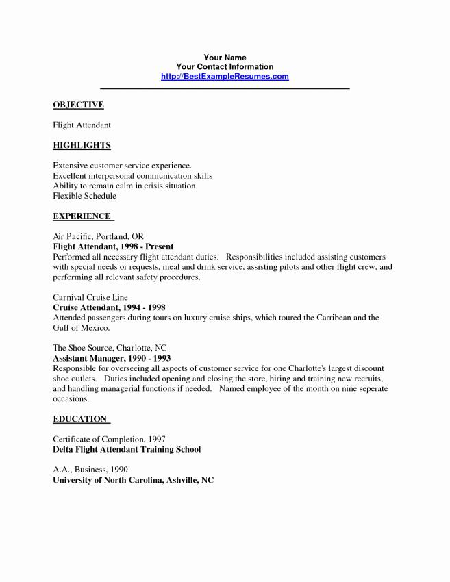 Flight Attendant Resume Template No Experience
