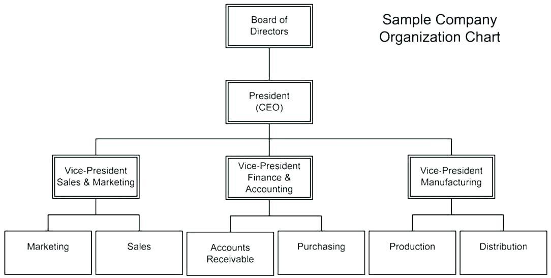 Free Blank Organisational Chart Template