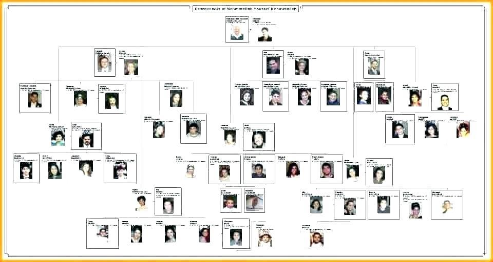 Free Download Family Tree Format