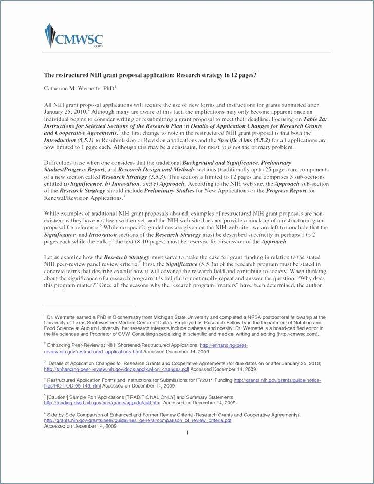 Free Eagle Scout Letter Of Recommendation Template