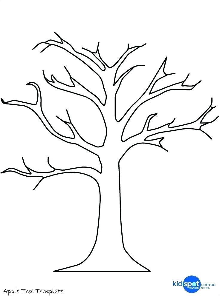 Free Family Tree Maker Layout