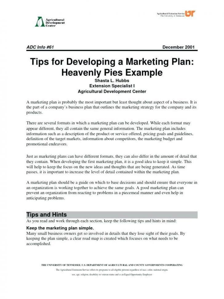 Free Film Production Business Plan Template