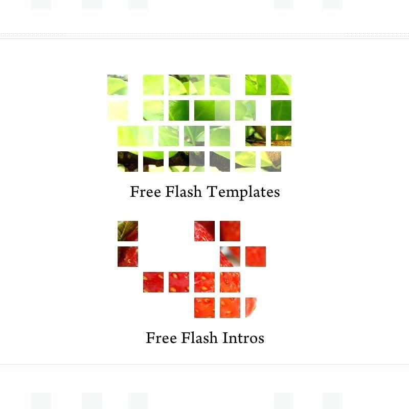 Free Flash Intro Templates For Websites