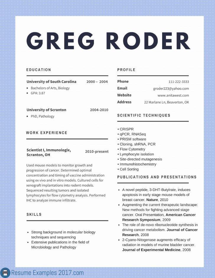 Free Resume Templates 2017 Doc