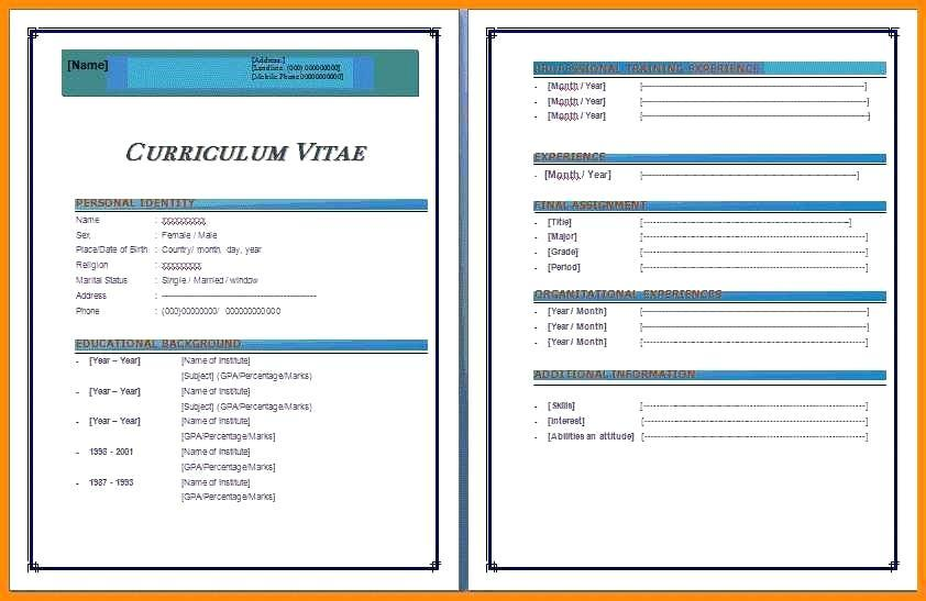 Free Resume Templates For Ms Word 2007