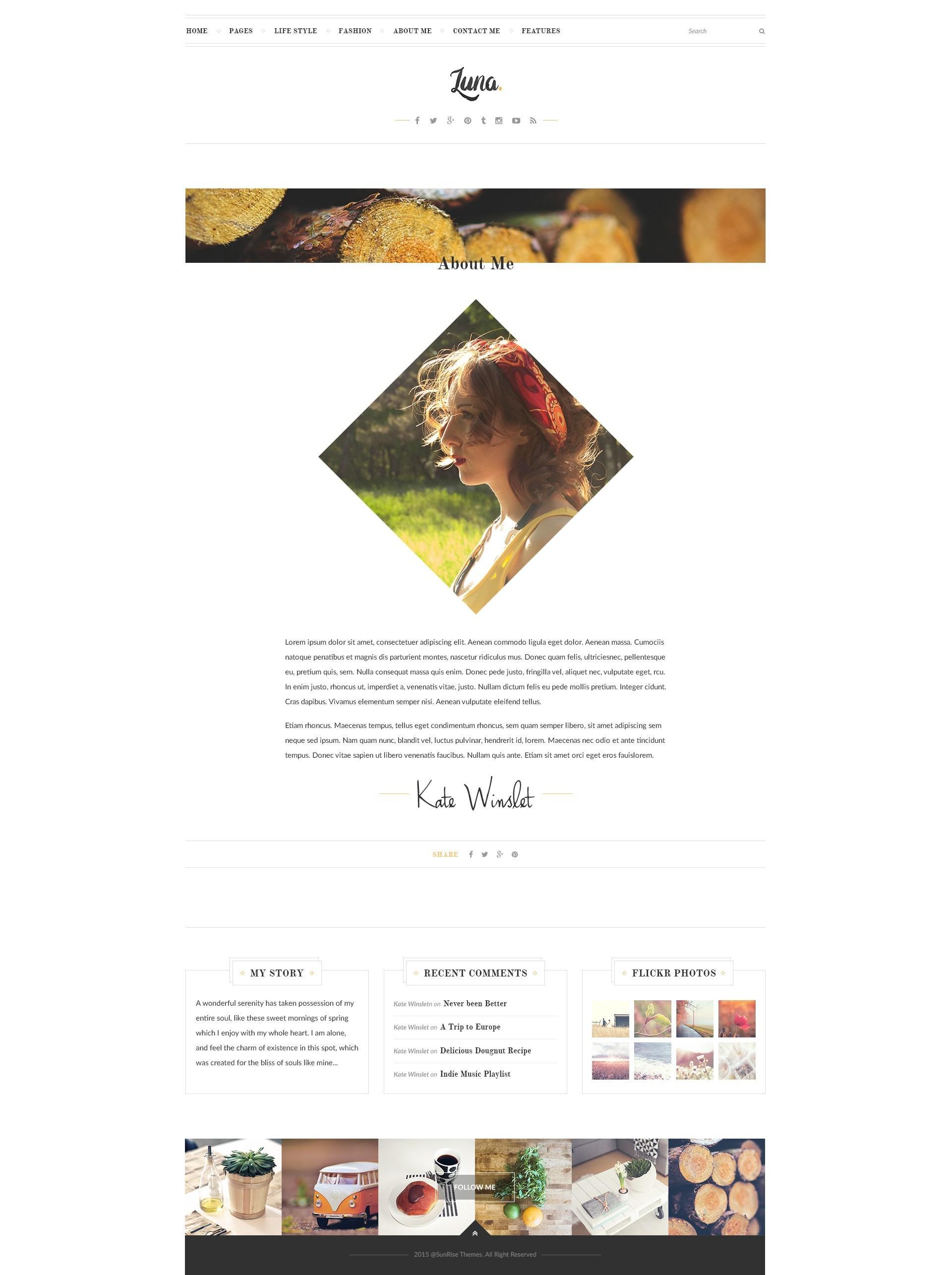 Free Template For WordPress Blog