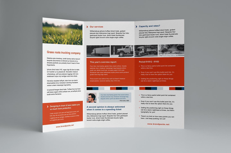 Free Tri Fold Brochure Templates Illustrator