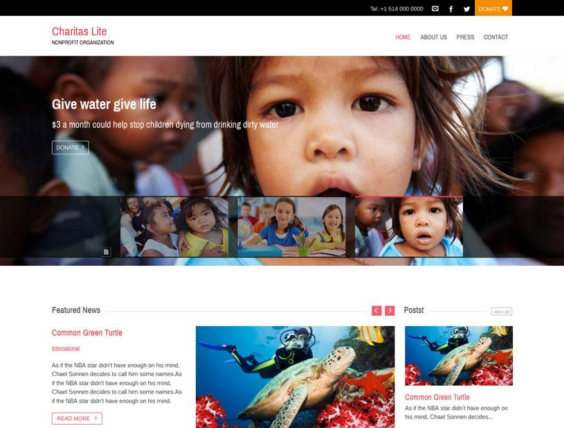 Free Wordpress Charity Website Templates