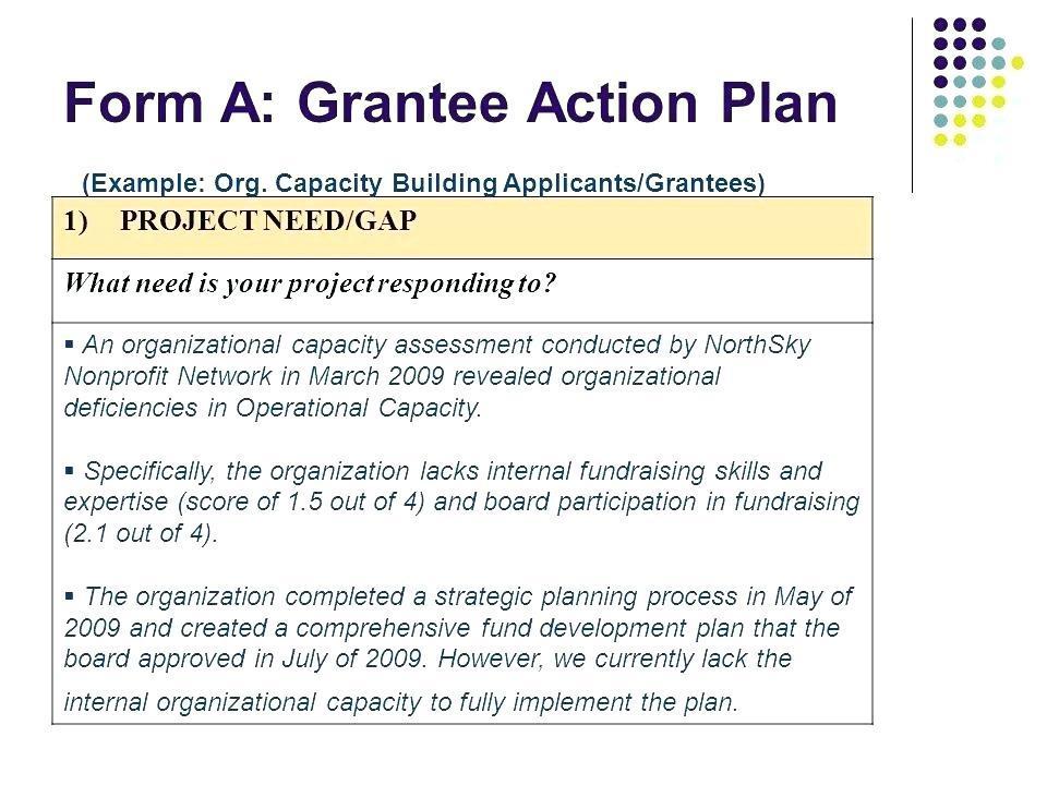 Fundraising Development Plan Examples