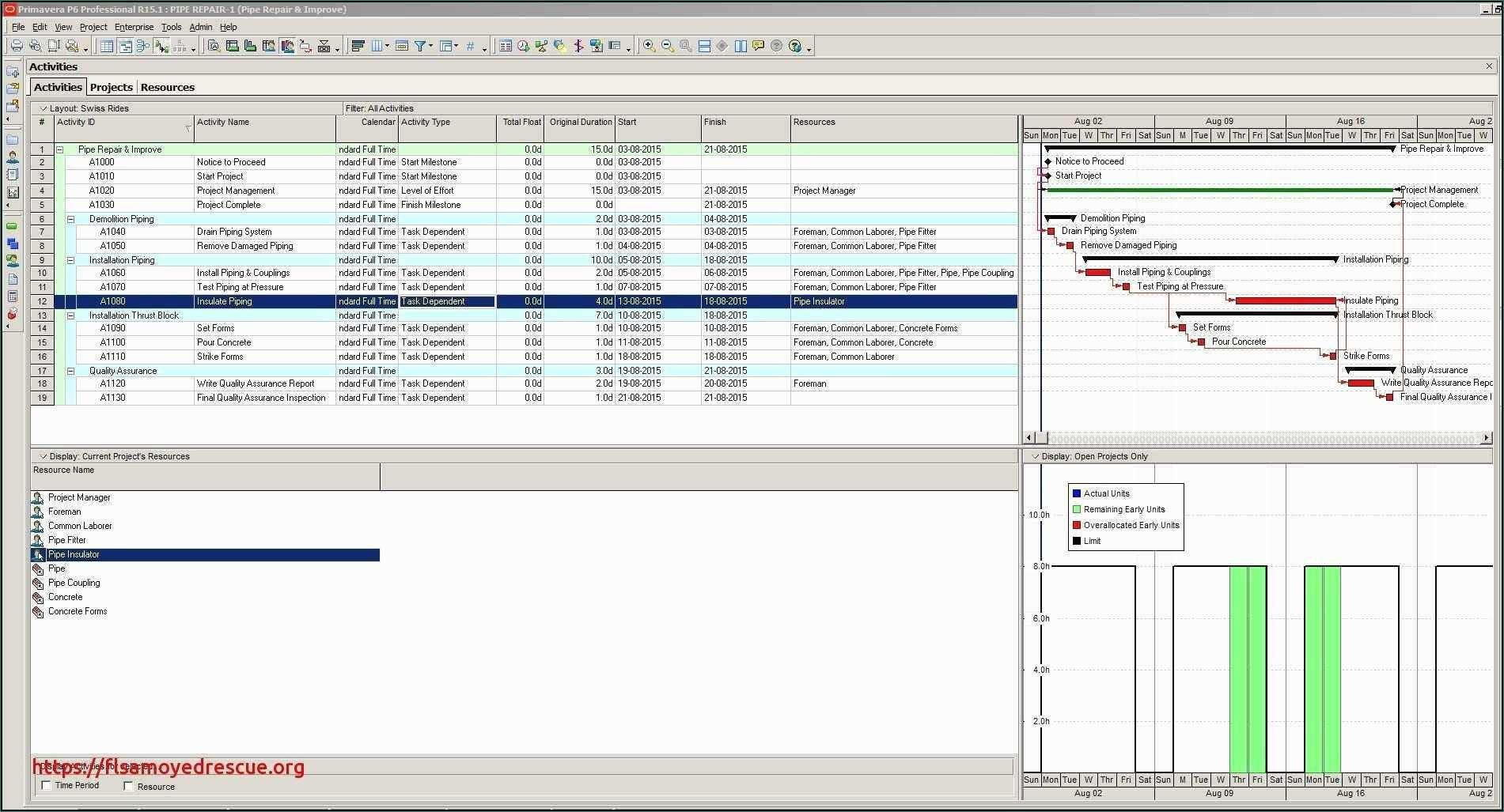 Gantt Format Timeline
