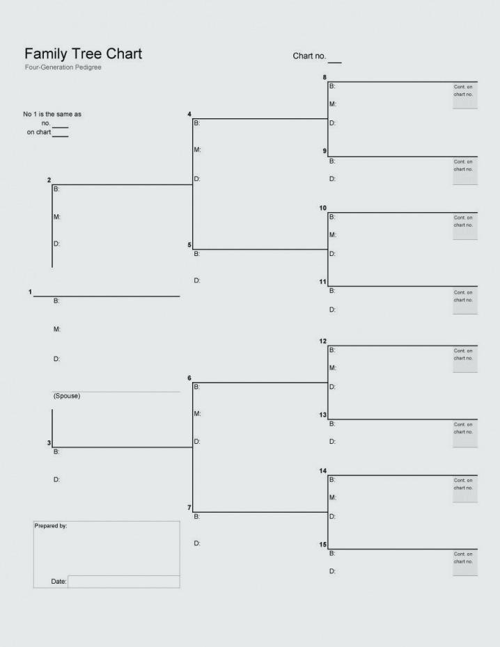 Genealogy Pedigree Chart Template