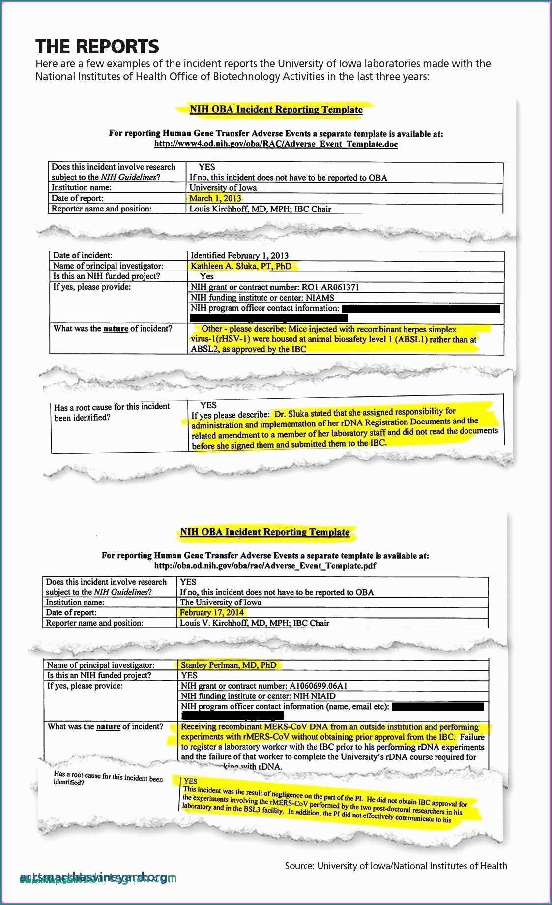 Government Contract Bid Template