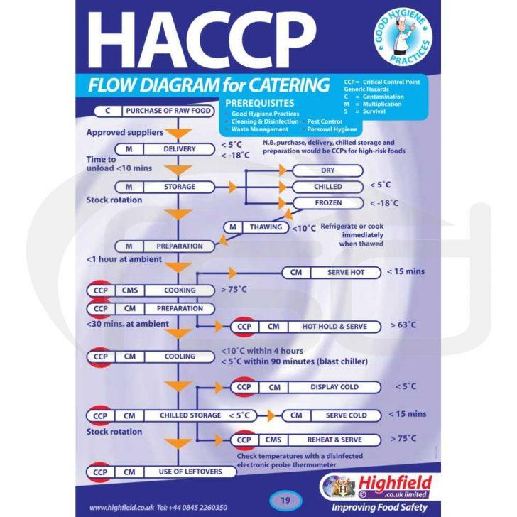 Haccp Flow Chart Template Uk