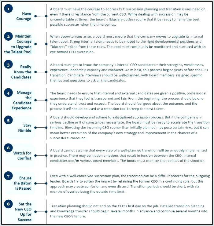 Hospital Emergency Succession Plan Template