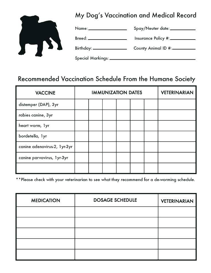Immunization Record Card Template