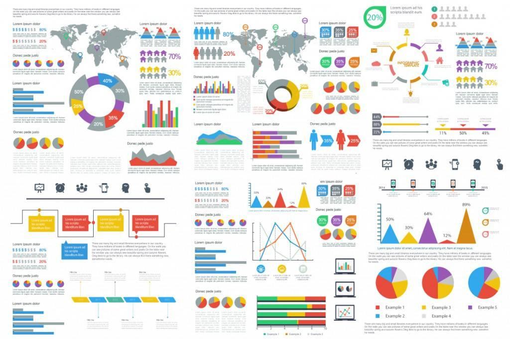 Infographic Cv Template Microsoft Word