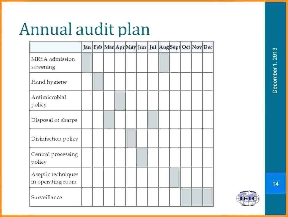 Internal Audit Plan Template Word