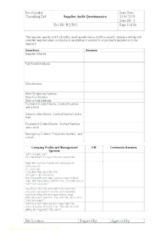 It Internal Audit Plan Example