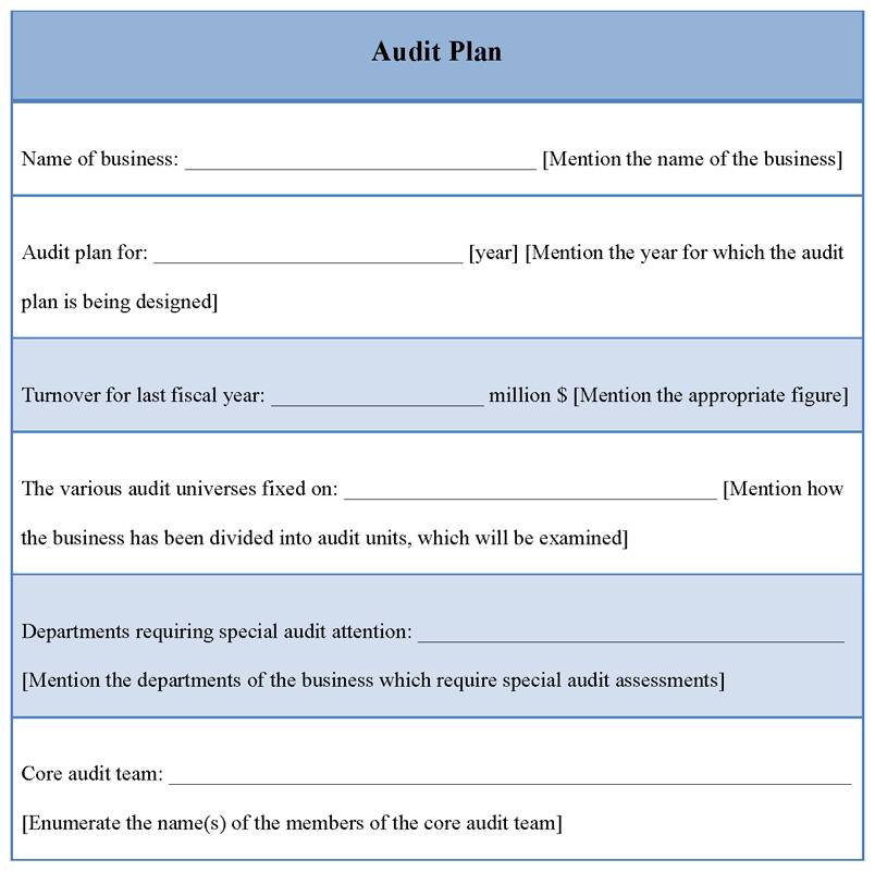 It Security Audit Plan Sample