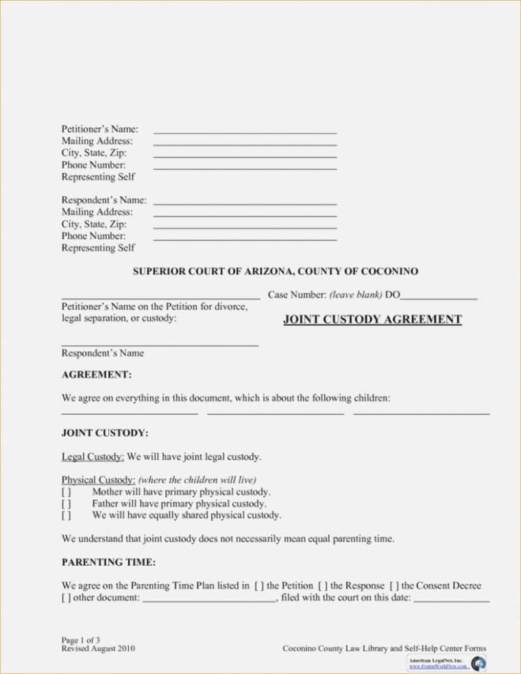 Joint Custody Agreement Form Canada