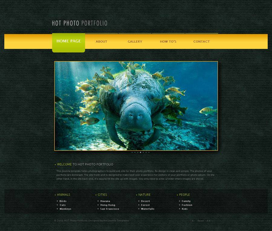 Joomla Photography Theme