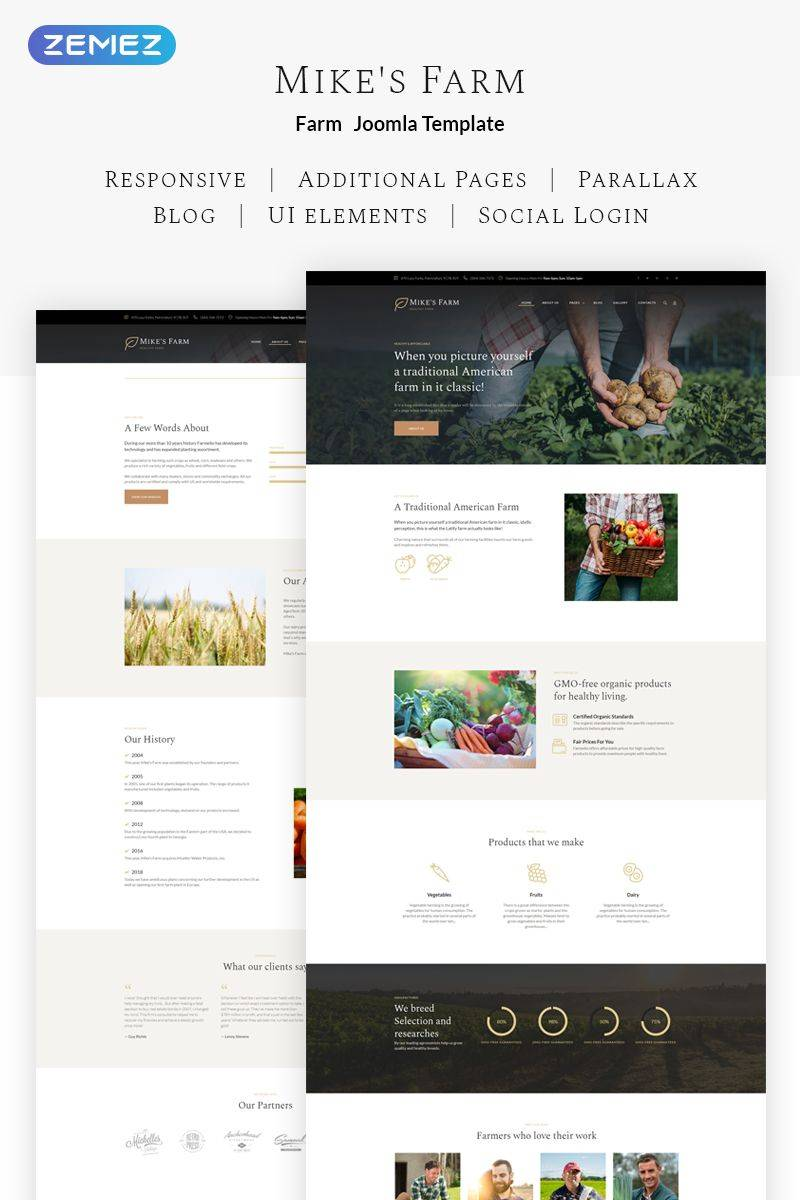 Joomla Template Responsive Simple