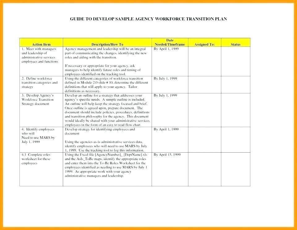Leadership Transition Plan Template