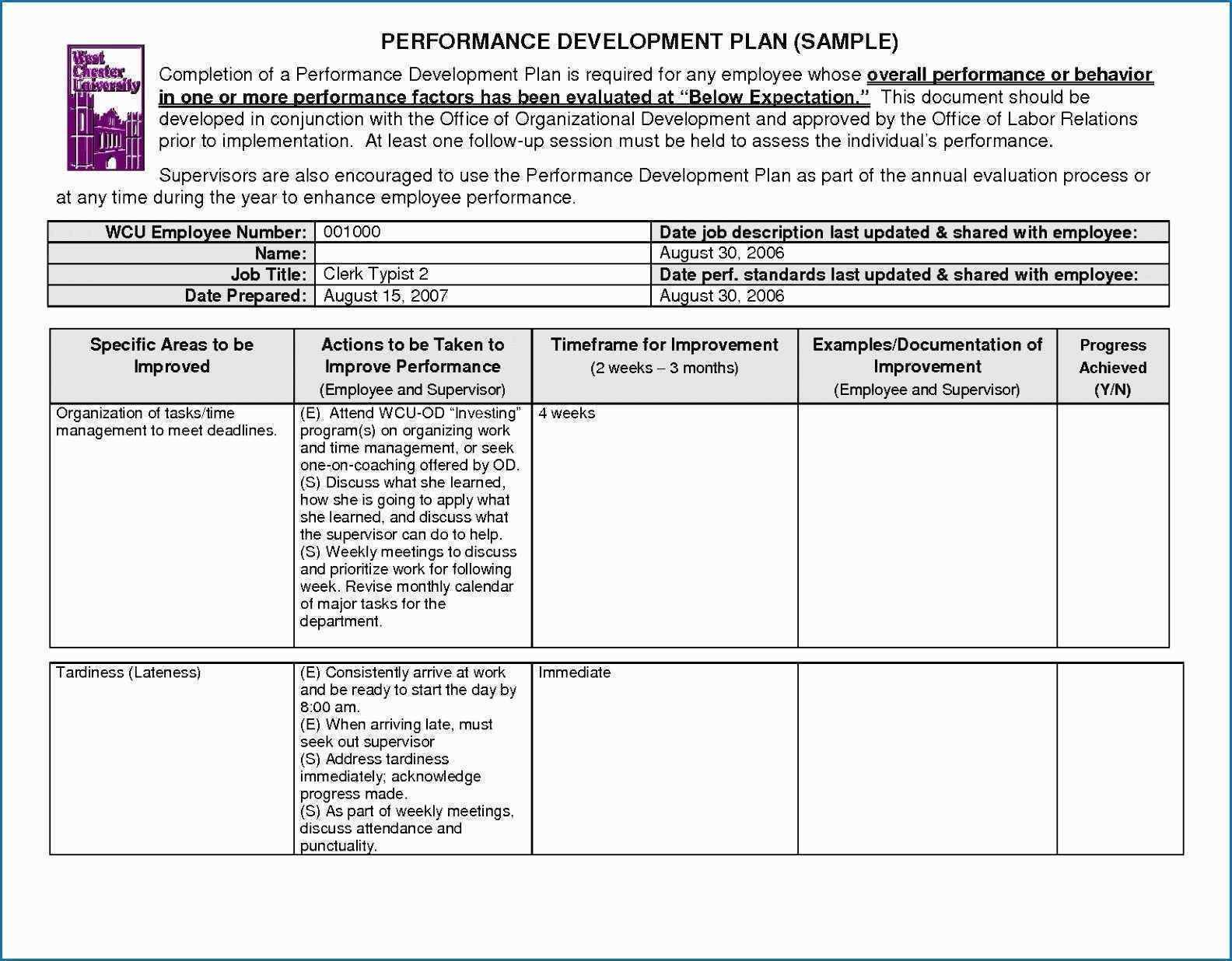 Linear Responsibility Chart Template Excel