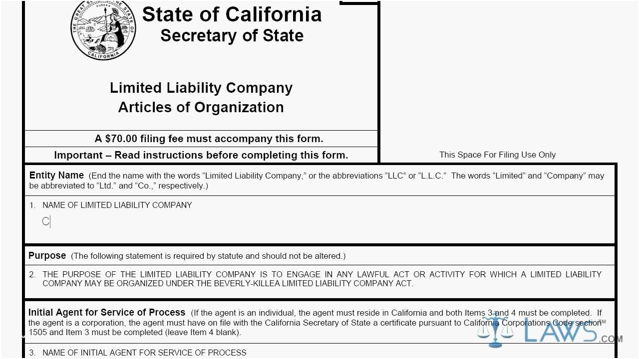 Llc Articles Of Organization Nj Template