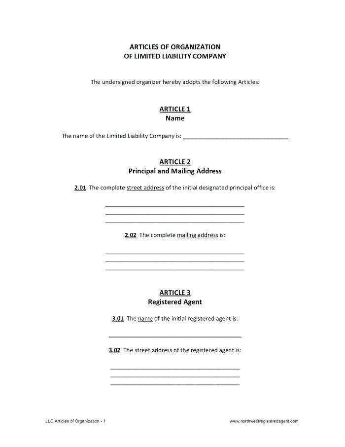 Llc Special Meeting Minutes Template