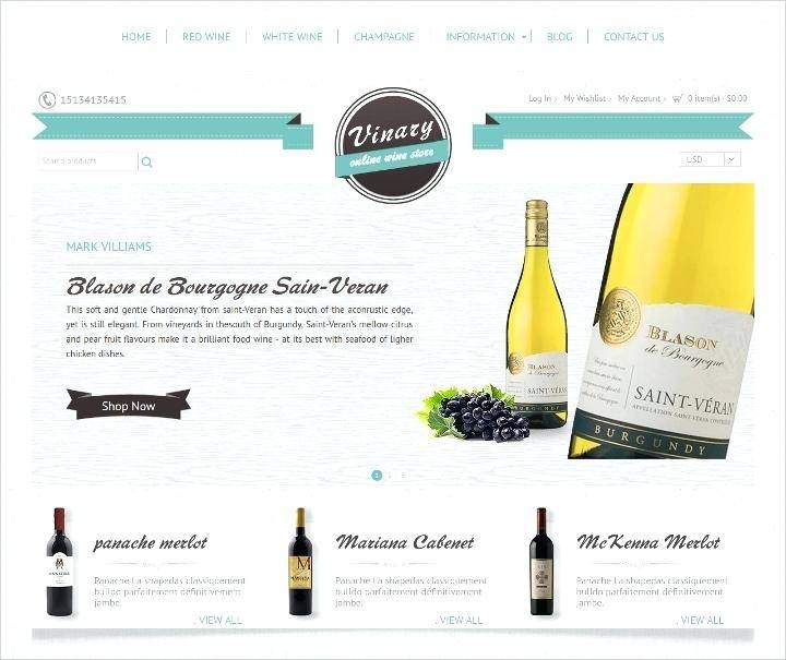 Magento Ecommerce Templates Free Download