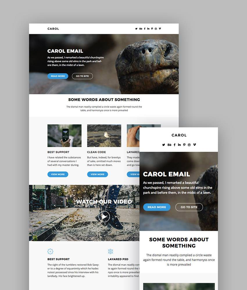 Mailchimp Email Newsletter Templates