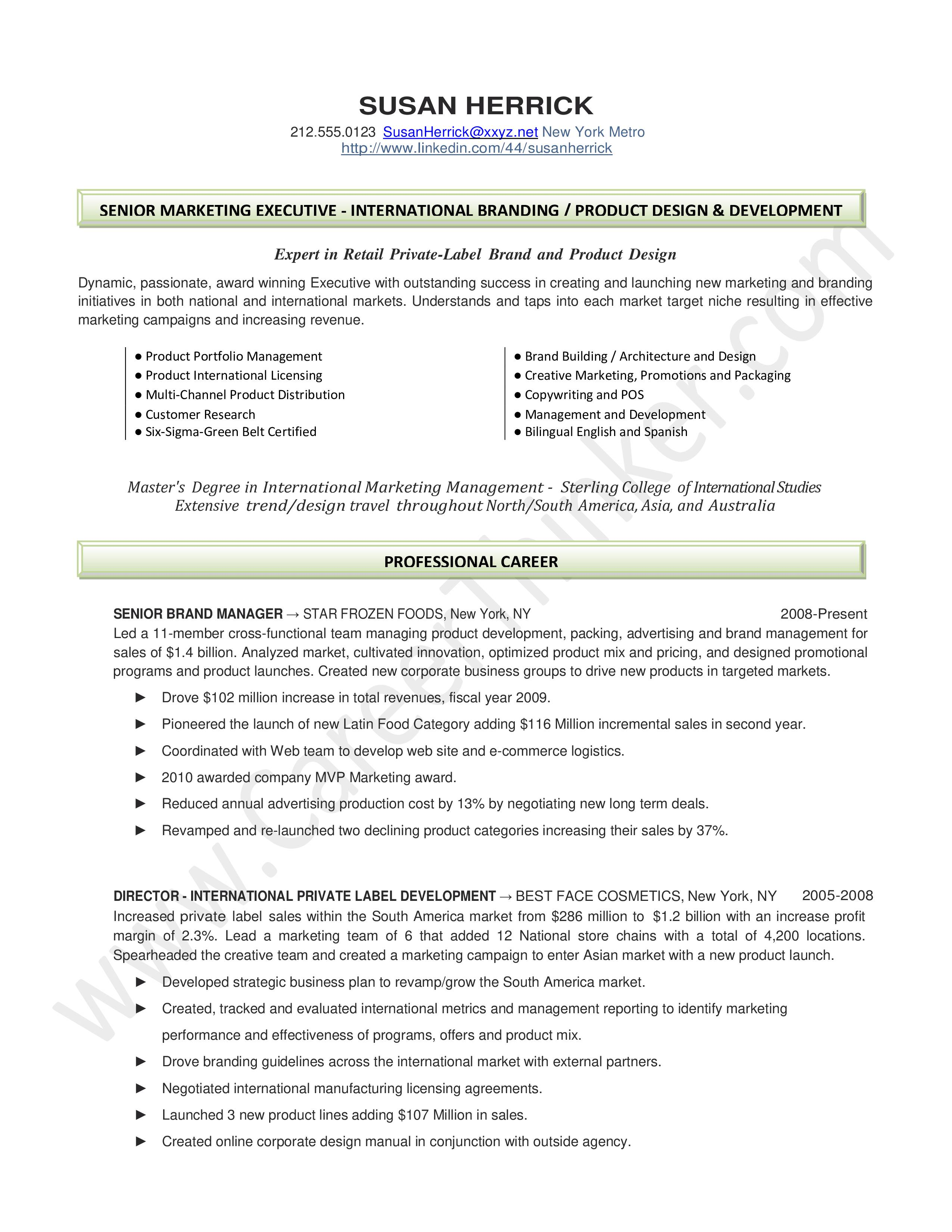 Marketing Executive Resume Templates
