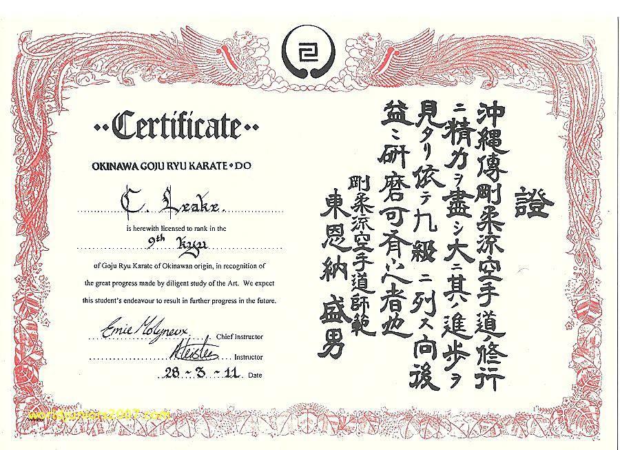 Martial Arts Certificates Templates Free