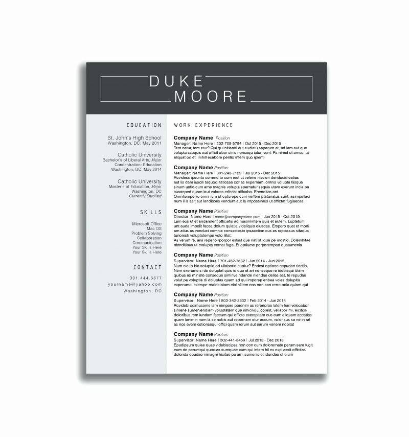 Mechanic Resume Templates Word
