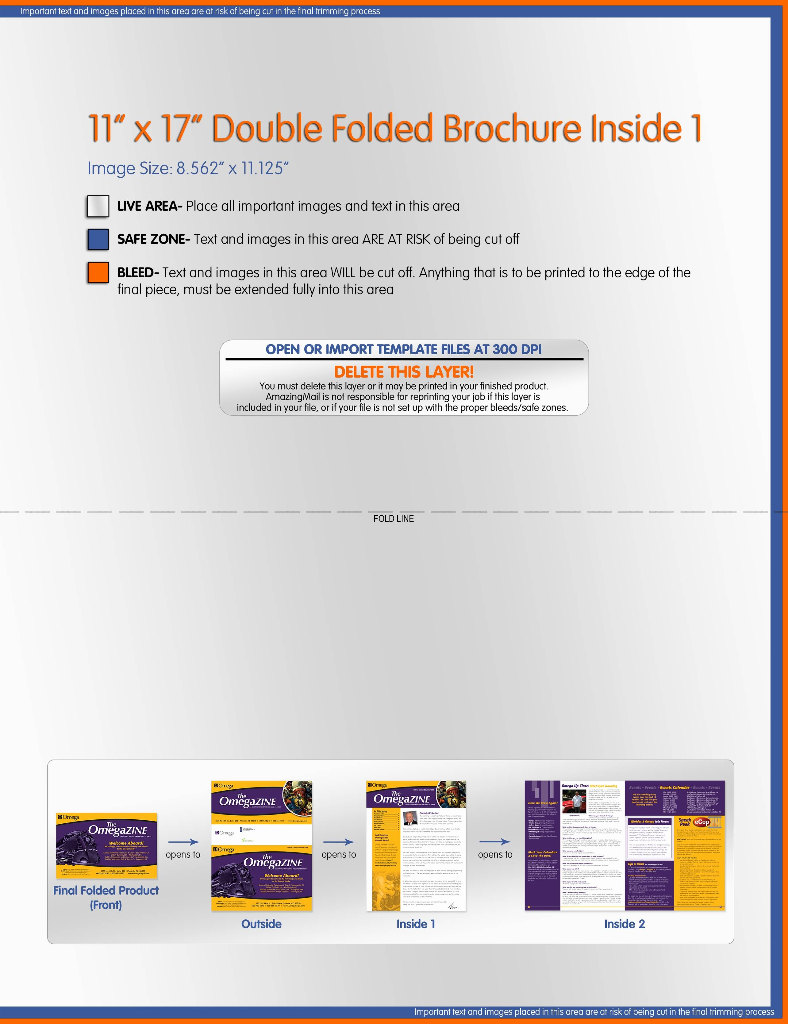 Medical Newsletter Templates Microsoft Word